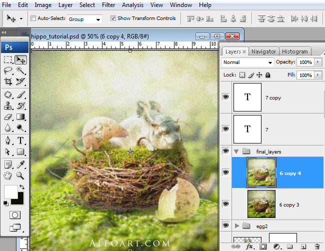 hippo, photoshop, nest, egg, shell, flying hippo, cute, baby, wings, hippopotamus, feathers