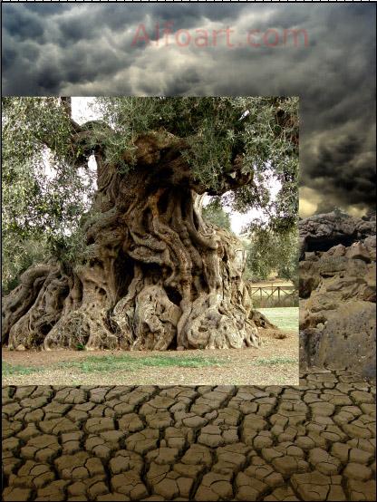 fantastic old tree